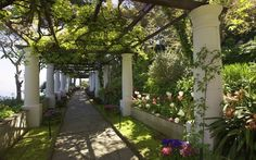 What do you think about a walk in a private garden instead of a bunch of flower? #Capri #TravelTuesday #DestinationWedding