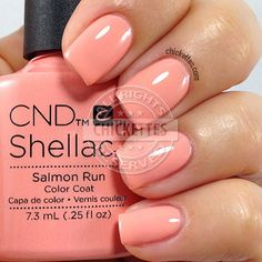 CND Shellac Salmon Run - swatch by Chickettes.com. CND Shellac is available at www.esthersnc.com