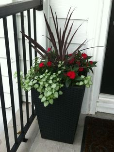 One way to beautify the entrance of your home is to place some flower pots close to the door. Here are several front door flower pots to inspire Outdoor Flowers, Outdoor Planters, Garden Planters, Tall Planters, Container Flowers, Container Plants, Container Gardening, Front Door Planters, Garden Spaces