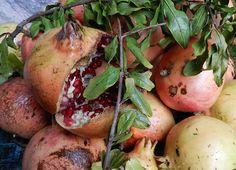 Melagrane #ricettedisardegna #recipe #sardinia