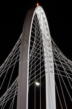 Ponte di Calatrava in RE [Santiago Calatrava Bridge] Amazing Buildings, Amazing Architecture, Art And Architecture, Architecture Details, Santiago Calatrava, Frank Gehry, University Physics, College Physics, Physics Test