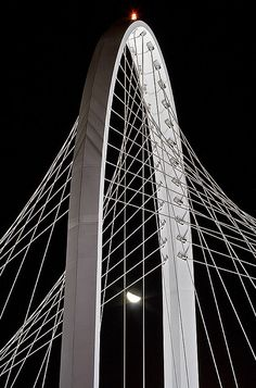 Santiago Calatrava Bridge