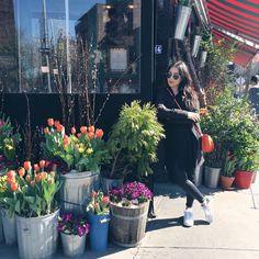 """""""Mi piace"""": 2,697, commenti: 25 - madametamtam (@madametamtaaam) su Instagram: """"Im Nachhinein fand ich heraus, dass ich vor einem Restaurant stand und nicht vor einem Blumenladen…"""" Photography Ideas, Restaurant, Instagram Posts, Plants, Travel, Twist Restaurant, Diner Restaurant, Viajes, Plant"""