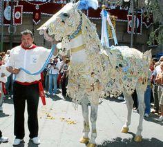 caballos del vino 2013