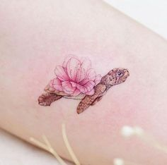 Beautiful baby sea turtle by Mini Lau