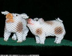 小猪149.jpg