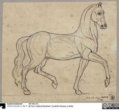 Pferd - Das Erbe Schinkels - Der Onlinekatalog - SM 39d.191