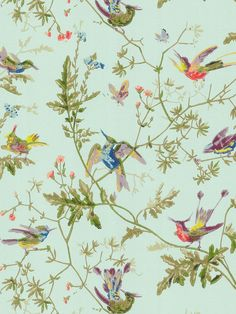 Buy Cole & Son Archive Anthology Hummingbirds Wallpaper online with Houseology's Price Promise. Full Cole & Son collection with UK & International shipping. Colorful Wallpaper, Fabric Wallpaper, Wallpaper Roll, Wallpaper Ideas, Beautiful Wallpaper, Print Wallpaper, Bird Wallpaper Bedroom, Wallpaper Panels, Wallpaper Wallpapers
