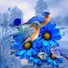GIFS HERMOSOS: flores encontradas en la web                                                                                                                                                                                 Más