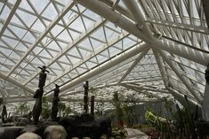 Plasma Studio's Crystalline Xi'An Greenhouse Sparkles in the S...