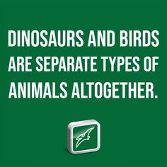 Dinosaurs and birds are separate types of animals altogether. Western Michigan University, University Of Liverpool, Institute For Creation Research, Bird Trap, Extinct Birds, Nature Paper, Origin Of Species, Recent Discoveries, Baby Dinosaurs