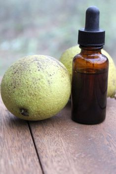 How to Make Black Walnut Tincture (and Powder) Your Practical Guide To Self Reliant LivingYou are here: / / How to Make Black Walnut Tincture How to Make Black Walnut Tincture This post Walnut Oil, Walnut Shell, Walnut Stain, Herbal Remedies, Natural Remedies, Black Walnut Tree, Homemade Black, Oil Uses, Medicinal Plants