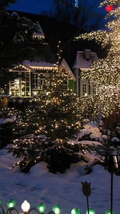 A Home Decorated In Outdoor Christmas Lights. Gonna fall in love with a christmas tree Christmas Scenes, Christmas Mood, Noel Christmas, Outdoor Christmas, Cottage Christmas, Magical Christmas, Christmas Villages, Victorian Christmas, Christmas Christmas