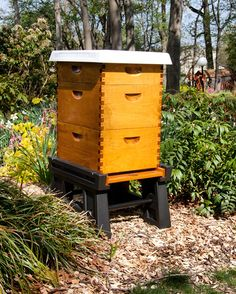 Our Ultimate Hive Stand and Hive Cover! Make your Hive look sleek and perfect in your apiary. #ultimatehivestand #hivestand