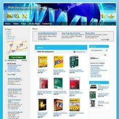 Established Web Development Online Business Website For Sale! Free Domain Name!