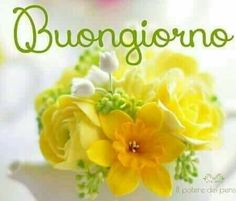 buongiorno buongiorno pinterest italienische zitate italienisch und guten morgen. Black Bedroom Furniture Sets. Home Design Ideas