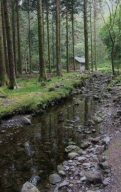 Hikers Heaven Gougane Barra Forest Park in Co Cork Ireland.