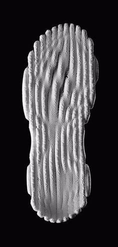 Zarki shoe