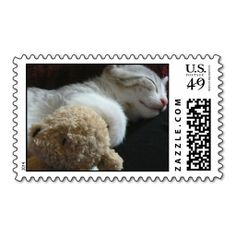 >>>Order          Alfie kitten postage stamps           Alfie kitten postage stamps lowest price for you. In addition you can compare price with another store and read helpful reviews. BuyThis Deals          Alfie kitten postage stamps Online Secure Check out Quick and Easy...Cleck Hot Deals >>> http://www.zazzle.com/alfie_kitten_postage_stamps-172316072396099449?rf=238627982471231924&zbar=1&tc=terrest