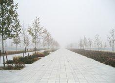 Valdebebas una mañana de niebla. by Valdebebas, via Flickr