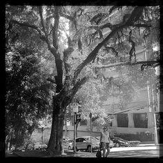 #tramas_urbanas #pittoresco uma questão de escala/ a matter of scale #saopaulo #hipstamatic #hipstaconnect #claunch72monochrome #kattiamodelolinda
