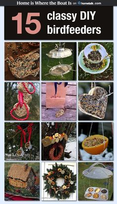 Really Easy Cookies For The Birds Love Love Love Bird - Adding Bird Feeders To Your Winter Garden Easy Ways To Help Birds Diy Peanut Butter Bird Treats Are Just The Thing Cute Treats To Feed The Birds Kids Will Love Classifying The Different Kinds Bird Feeder Craft, Garden Bird Feeders, Bird Suet, Bird Seed Ornaments, Homemade Bird Feeders, Bird Food, Outdoor Christmas, Pet Birds, Dyi Crafts