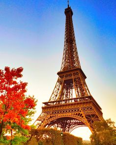 Eiffel Tower - Fall in Paris