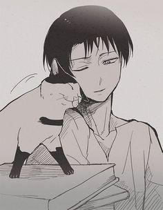 Imagen de levi, cat, and anime