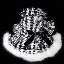「犬 セレブ 服」の画像検索結果