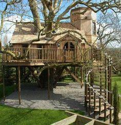 crazy fancy tree house