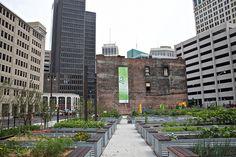 Lafayette Greens Detroit by Detroitmi97 Aka Mark The kid, via Flickr
