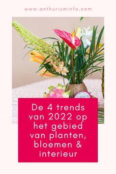 De 4 trends voor 2022 op het gebied van interieur, planten en bloemen! Het zijn vier stijltrends die onderling sterk verschillen, maar allemaal gebaseerd zijn op de huidige tijdgeest. Lees snel verder en laat je inspireren!   trends 2022 interieur - interieur trends 2021 2022 - trends 2022 interieur woonkamer - kleur trends 2022 interieur - plant trend 2022 Plants, Blog, Easy Meals, Blogging, Plant, Planets