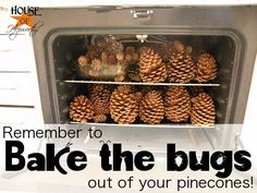 "Bake the Bugs?  Never thought of that!!! LOL  So I googled ""baking pinecones"" and found a tutorial on how to do it. Basically pre-heat your oven to 200 degrees and then put your pine cones in for 45 minutes."