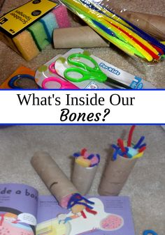 What are our bones made up of? Find out more by clicking the pic