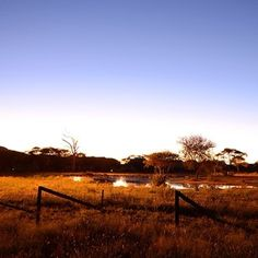 """erindinamibia: """"The watering hole at Camp Elephant at night looks absolutely wonderful don't you think? African Sunset, Private Games, Game Reserve, Night Looks, Night Photography, Campsite, Wildlife, Elephant, Environment"""