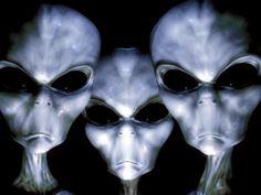 Terra X Ufos: As 6 Espécies Exóticas Lutando Atualmente Pelo Controle da Terra