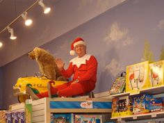 a real live elf on the shelf at Learning Express in Wilmington!!!