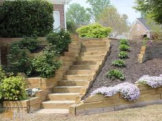 Stairs leading to backyard. Love the terraced planter boxes, too.