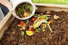 Como hacer abono e insecticidas organicos!