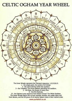 Celtic Ogham Year Wheel Print By Yuri Leitch ~ celtic ogham witchcraft zodiac sabbat wheel of the year wicca pagan symbol symbols druid druidic tree trees Simbolos Tattoo, Inca Tattoo, Symbol Tattoos, Druid Tattoo, Ogham Tattoo, Celtic Druids, Celtic Paganism, Celtic Symbols, Druid Symbols