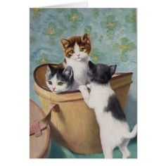 Kittens in a Hat Box Card - vintage gifts retro ideas cyo