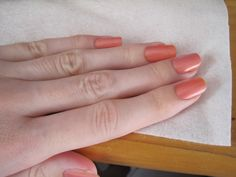 Believe it or not, two different colours - Love Me Tender and Melon of Troy