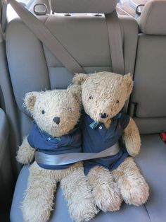 When we travel, we always make sure the bears are wearing their seat belts. Safety first!