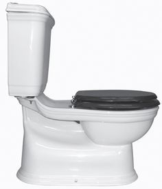 another toilet option