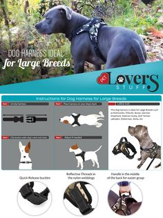"""A GREAT GIFT IDEA FOR THIS HOLIDAY SEASON: This dog harness is ideal for Large Breeds such as Rottweiler, Pitbulls, Boxer, German shepherd, Siberian Husky, Bull Terrier, Labrador, Doberman, Akita, etc. And no matter how big they are, they are our babies and we want the very best for them. Our CHOKE FREE harness is completely ADJUSTABLE to fit chest girth 24"""" to 33"""" and Neck 21"""" to 27""""."""