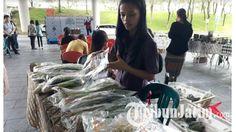 Universitas Ciputra Surabaya Hadirkan Bronjonk dalam Bazar Kepo-in Sosial Entrepreneur, Apa Itu?