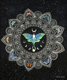 """Lunar Moth Mandala with Background"" by BriLazar 
