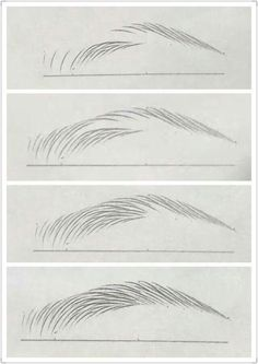 Malerei/Zeichnen Art Inspirations Eyebrow tutorial Wedding Faq: Answers For Planning And Paying For Pencil Art Drawings, Art Drawings Sketches, Realistic Drawings, Face Drawings, Inspiration Art, Art Inspo, Pencil Drawing Inspiration, Drawing Techniques, Drawing Tips