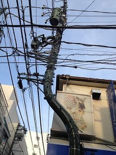strange telegraph pole