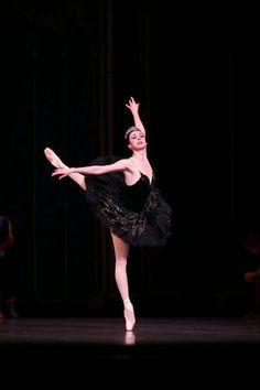 Nina Ananiashvili's last Swan Lake in Japan,State Ballet of Georgia